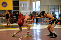 ursinus fall brawl